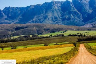 off-the-beaten-track-to-Greyton