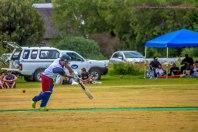 cricket26dec14-2
