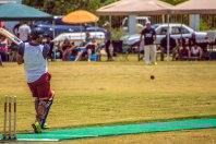 cricket26dec14-3