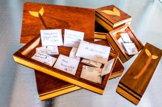 seedboxes1