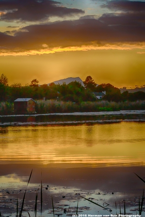 stanford-sunrise-4