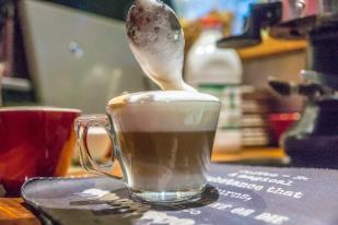 y-latte1