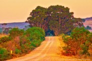 elim-road-hot-and-dry-sunset