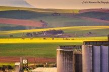 23aug18agricultural-landscape2